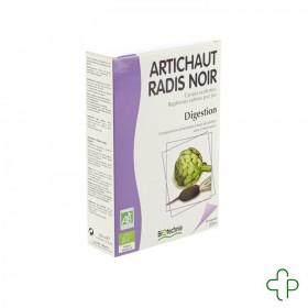 Artichaut-radis noir bio...
