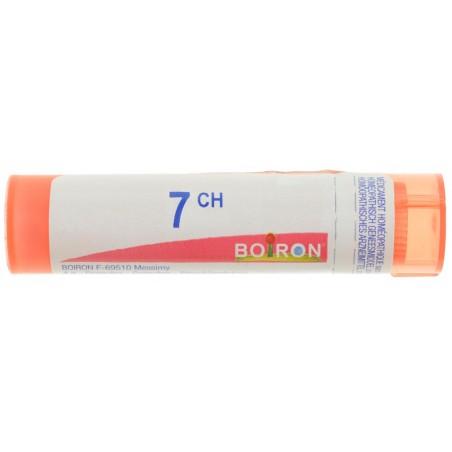 Absinthium 7CH granule Boiron