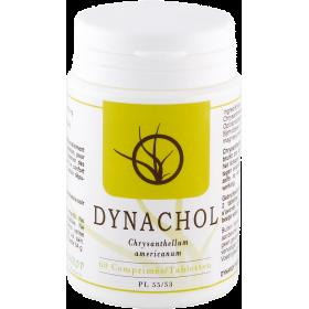 Dynachol Comprimés 60x400mg Dynarop