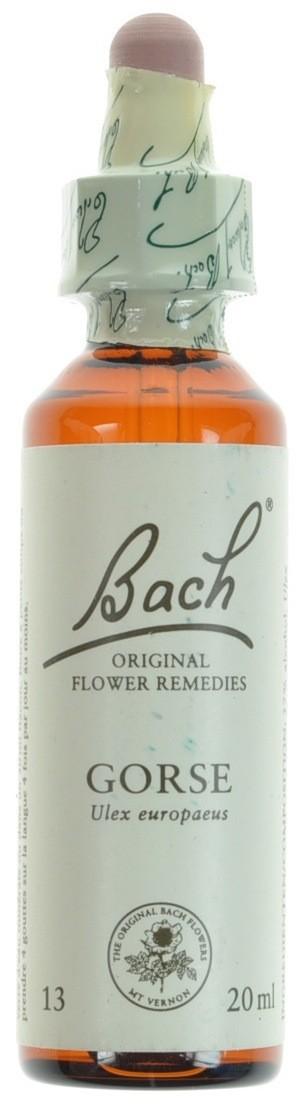 Fleurs de bach 13 gorse 20ml acheter en ligne for Acheter fleurs en ligne