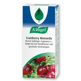 Vogel Cranberry Monarda Pot...